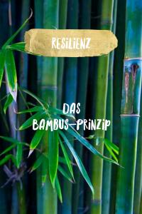 Resilienz aus der Krise in die Chance
